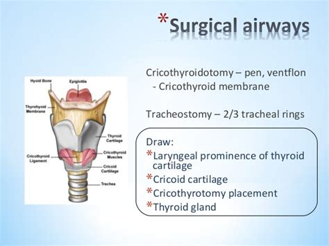 architectural distortion of thyroid gland picture 6
