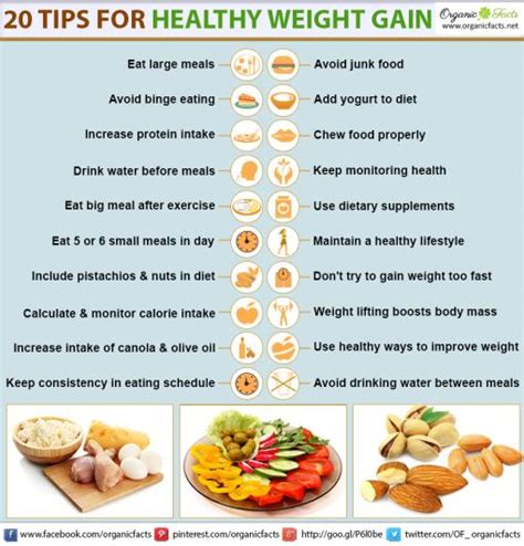 find weight gain recipes picture 5