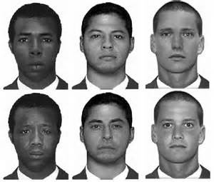 human hair identification picture 3