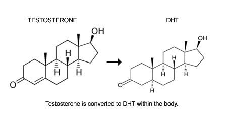 testosterone enant dht blocker picture 6