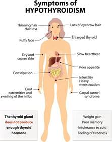 hypothyroid tests picture 7