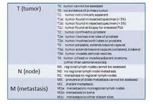 symptoms of advanced prostate cancer picture 13