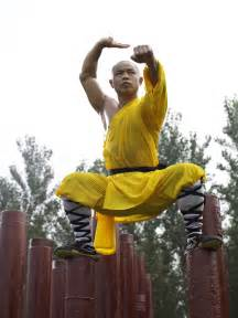 shaolin health training picture 7