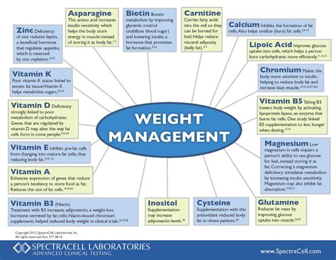 weight loss management diets picture 5