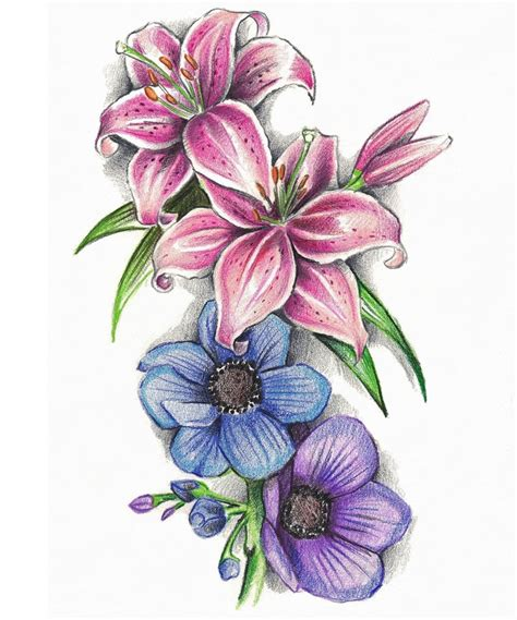dandelion flower pictures picture 5
