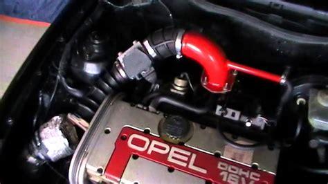 acai powercap review picture 2