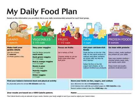 daily diet for vegan school age child picture 7