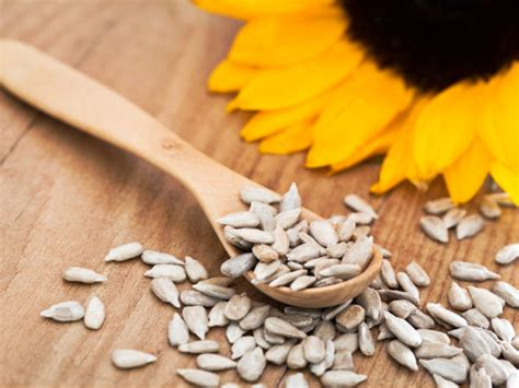 sunflower seeds and libido picture 1