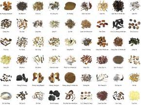 list of herbal medicine in china picture 6