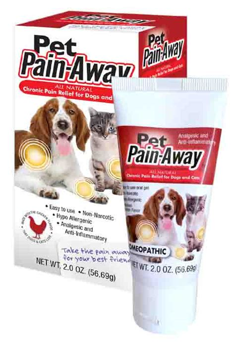 canine pain relief treatments picture 5