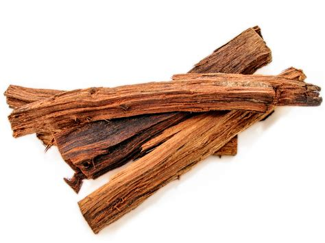 where can i buy palo dulce herb picture 13