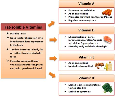 Cholesterol vitamin c e picture 9
