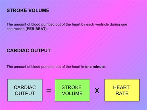 effects of exercise on heart rate and blood picture 11
