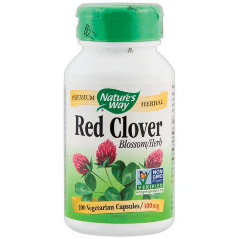 red clover herbal picture 19
