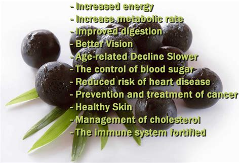 acai berry diets picture 11