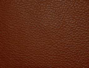 free images of skin picture 13