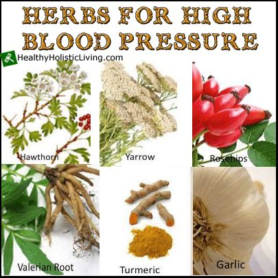 Indian herbals for high blood pressure picture 2