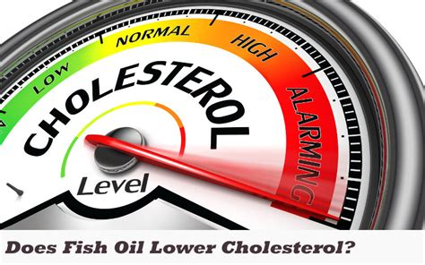 Oil lower cholesterol picture 5