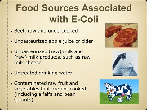 can e coli foods that cause cellulite picture 4