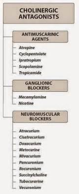 nicotine blocker medication picture 2