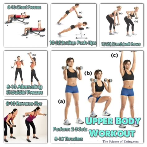 strength training exercises with weights for weight loss in women picture 3