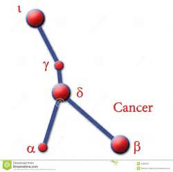 cancer of the small el picture 7