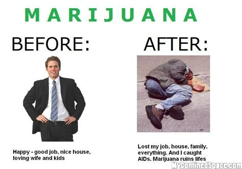 can you smoke marijuana when taking probiotics picture 12