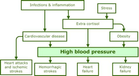 high blood pressure caused by bladder retention picture 9