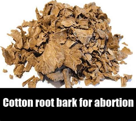 what herbs and roots terminate pregnancies in nigeria? picture 4