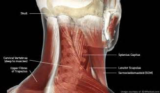 dizziness and joint pain picture 3