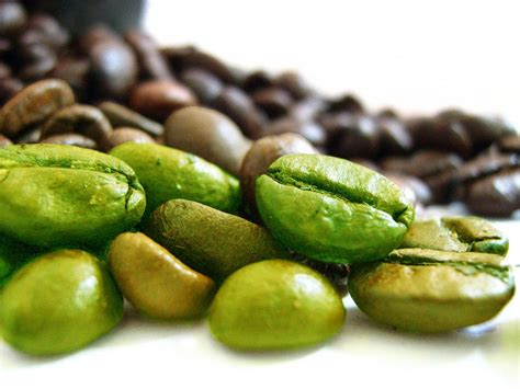 pure green coffee diet pills picture 5