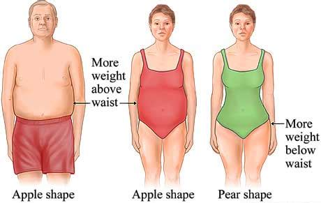 apples and pears diet picture 9