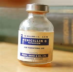 penicillin para sa aso picture 15