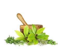 herbal health picture 13