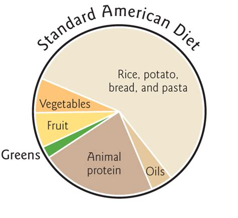american diet picture 10