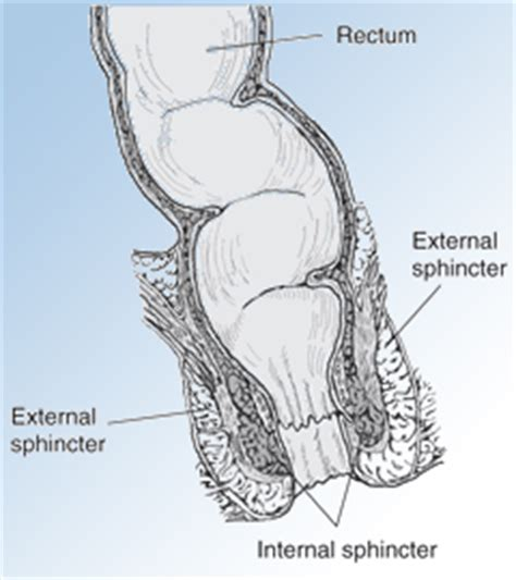 urinary incontinence in older male s picture 7