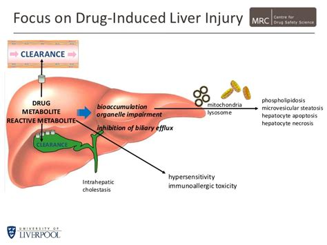 drug induced liver damage and chills picture 2