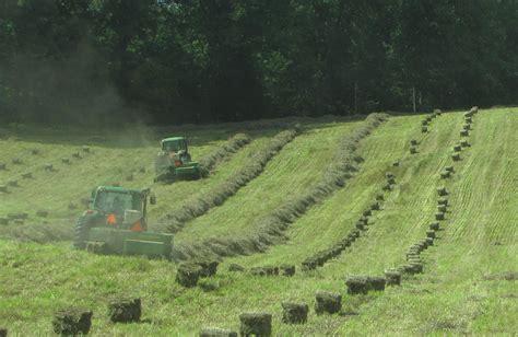 colorado alfalfa growers picture 10