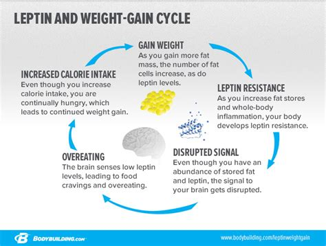 what causes people to be weight loss resistant picture 8
