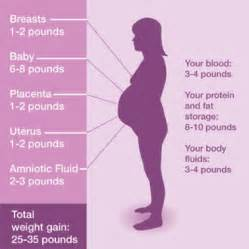 weight gain from pregnancy picture 1