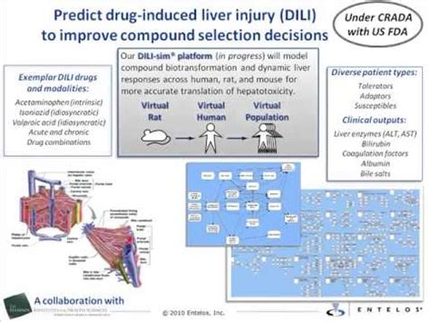 drug induced liver damage and chills picture 5