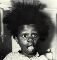 buckwheat and hair picture 2