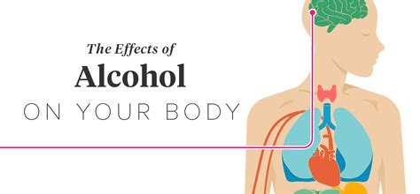 alcohol effects in muscle health picture 5