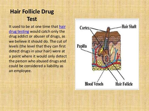 hair follicle drug test cost in wa picture 7