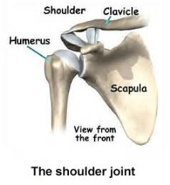 joint pain shoulder hips picture 1