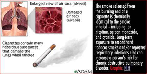 lung cancer and second hand smoke picture 9