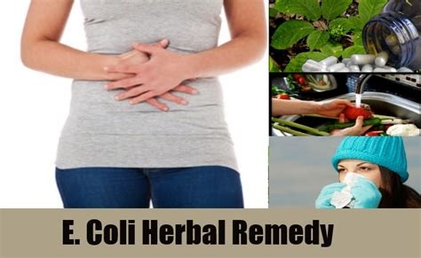 what herbal supplement kills e.coli picture 1