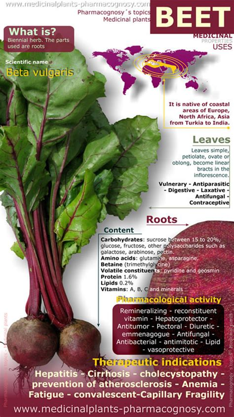beet benefits for liver picture 7