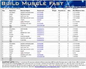 muscle building exercises picture 3