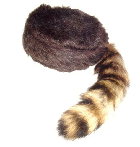 coon skin cap picture 10